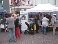 bonnerkulturundbegegnungsfest2016 063.JPG